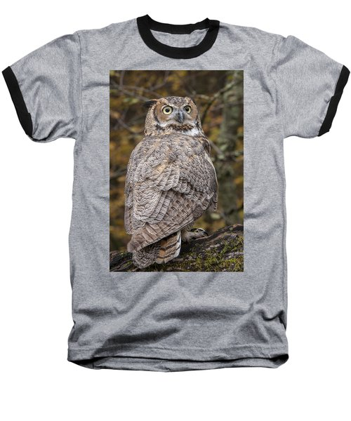 Great Horned Owl Baseball T-Shirt by Tyson Smith