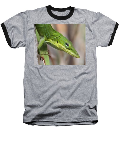 Baseball T-Shirt featuring the photograph Green Beauty by Doris Potter