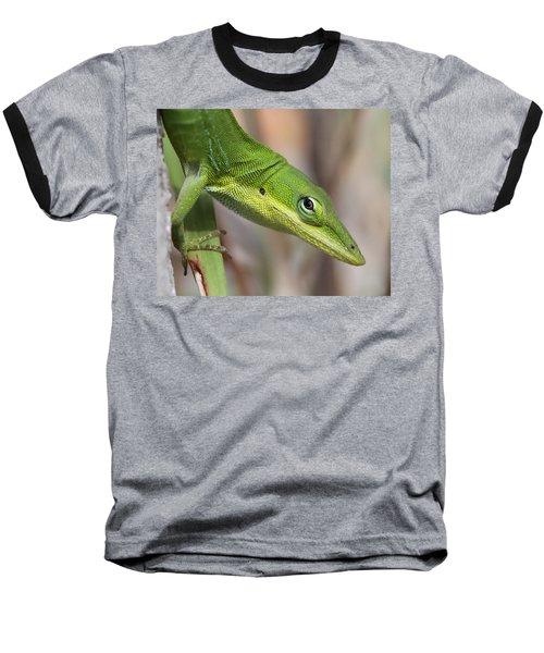 Green Beauty Baseball T-Shirt by Doris Potter