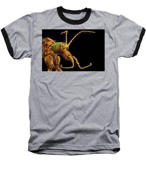 Green Eyed Crane Fly Baseball T-Shirt