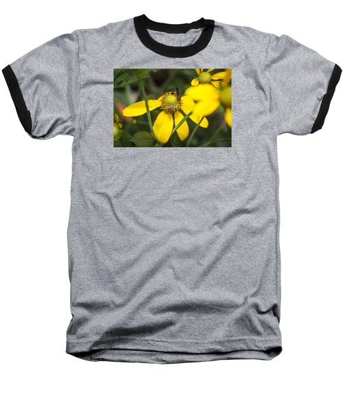 Green Headed Coneflowers Painted Baseball T-Shirt