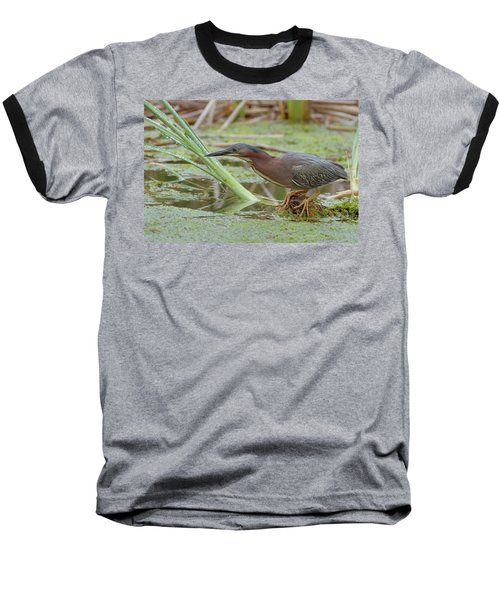 Baseball T-Shirt featuring the photograph Green Heron by Doug Herr