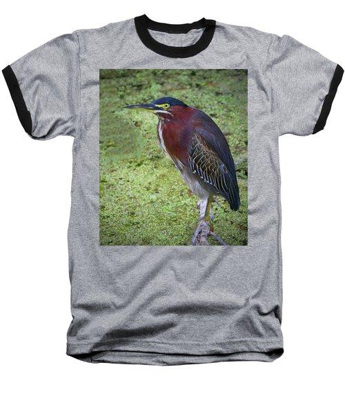 Green Heron Baseball T-Shirt