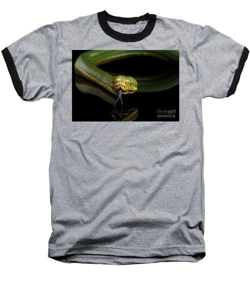 Green Tree Python. Morelia Viridis. Isolated Black Background Baseball T-Shirt