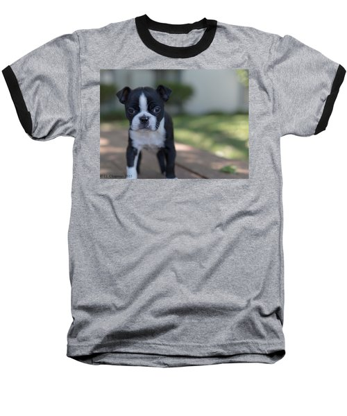 Harley As A Puppy Baseball T-Shirt