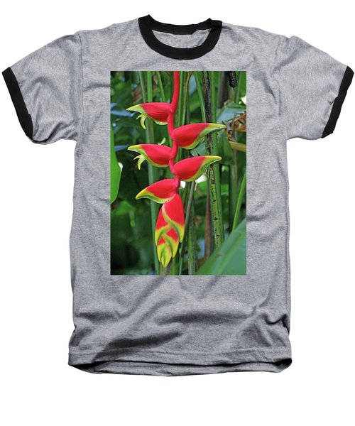 Hawaii Flora Baseball T-Shirt