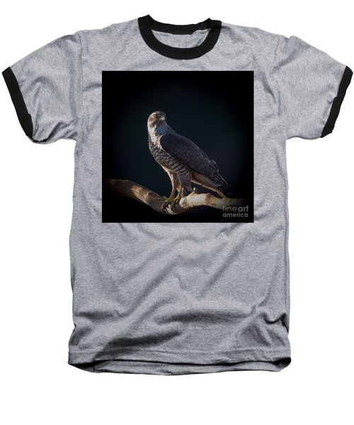 Hawk-eye Baseball T-Shirt