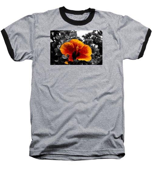 Hibiscus Beauty Baseball T-Shirt by Randy Sylvia