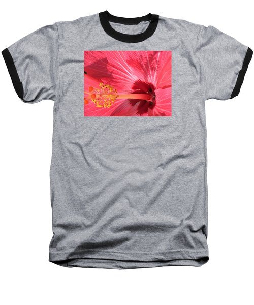 Hibiscus Baseball T-Shirt by Kay Gilley