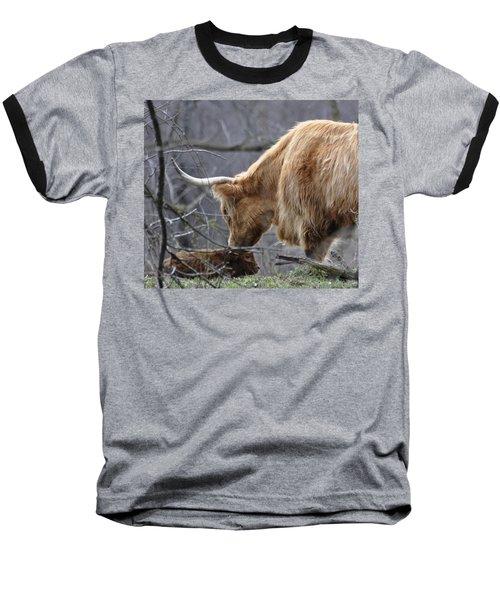 Highland New Born Baseball T-Shirt