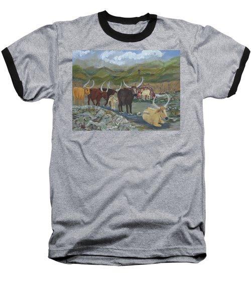 Home On The Range Baseball T-Shirt