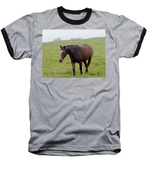 Horse In The Fog Baseball T-Shirt by Pamela Walton