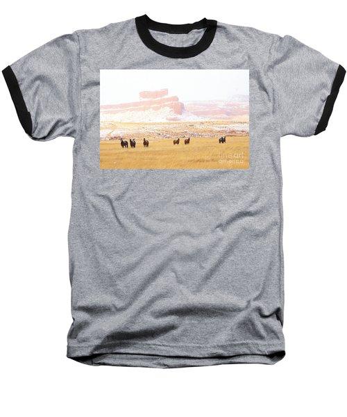 Horses Baseball T-Shirt