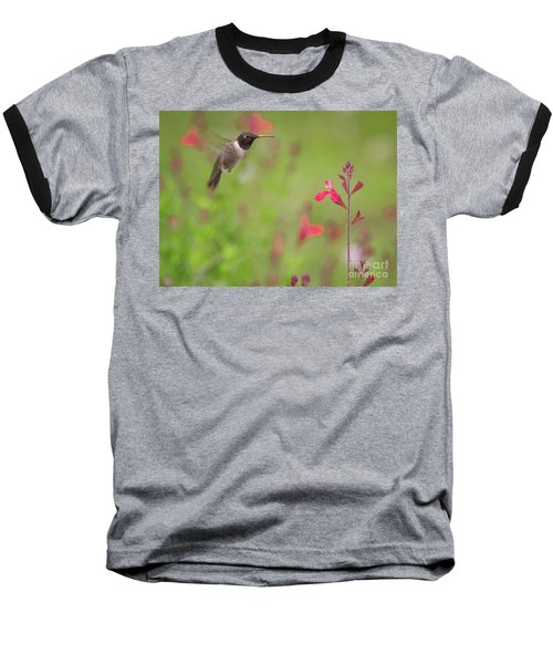 Hummingbird And Sage Baseball T-Shirt