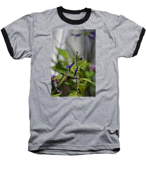 Hummingbird Baseball T-Shirt by Tim Good