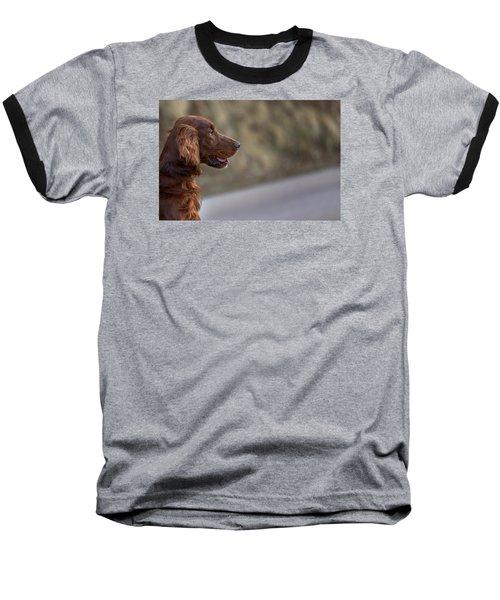 Irish Setter Baseball T-Shirt