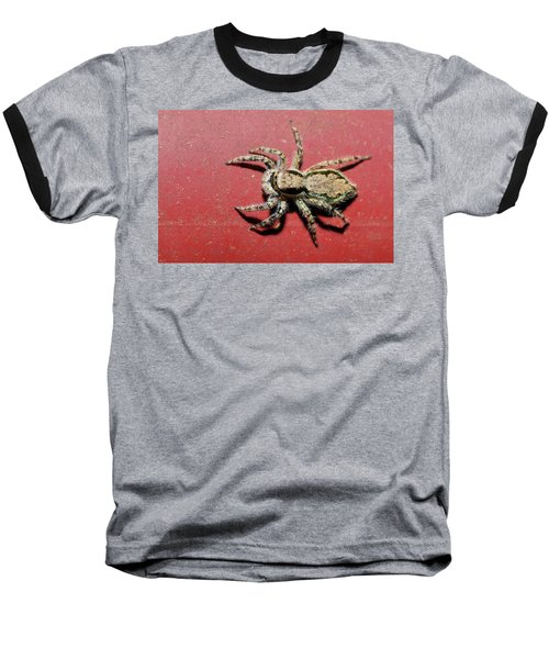 Jumping Spider Baseball T-Shirt