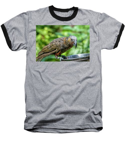Baseball T-Shirt featuring the photograph Kaka by Patricia Hofmeester