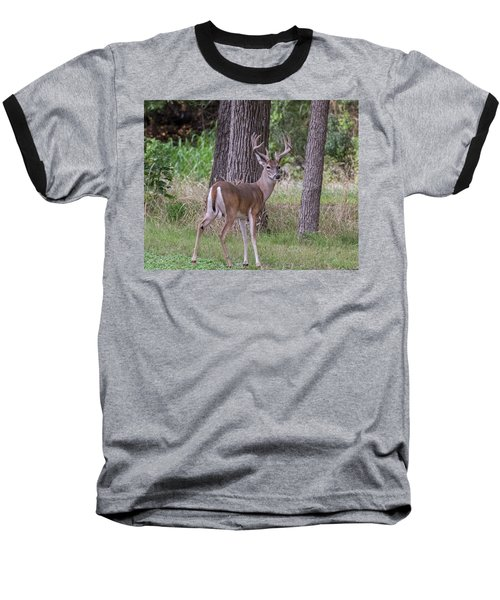 Large Buck Baseball T-Shirt