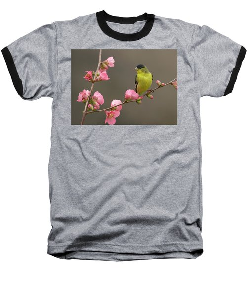Baseball T-Shirt featuring the photograph Lesser Goldfinch by Doug Herr