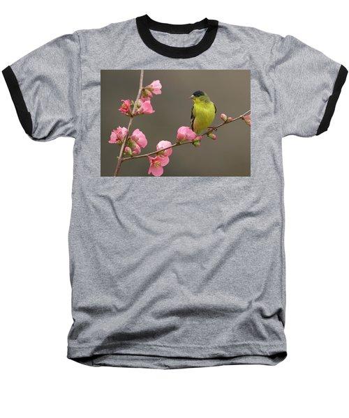 Lesser Goldfinch Baseball T-Shirt