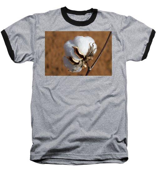 Limestone County Cotton Boll Baseball T-Shirt