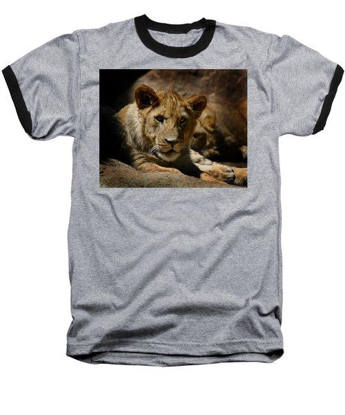 Lion Cub Baseball T-Shirt by Anthony Jones