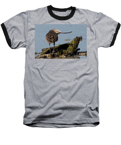Long-billed Curlew Baseball T-Shirt