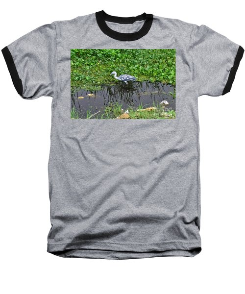 Baseball T-Shirt featuring the photograph Looking For Lunch by Carol  Bradley