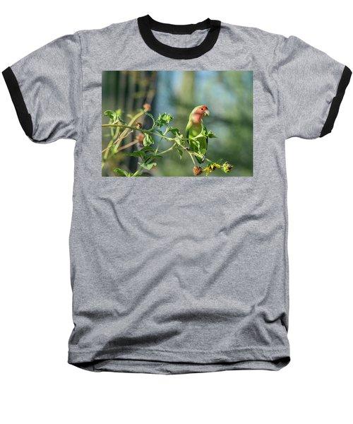 Lovely Little Lovebird  Baseball T-Shirt by Saija Lehtonen