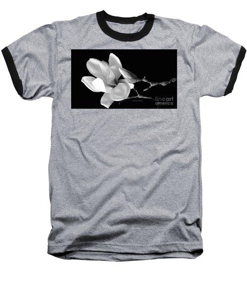Magnolia In Monochrome Baseball T-Shirt by Jeannie Rhode