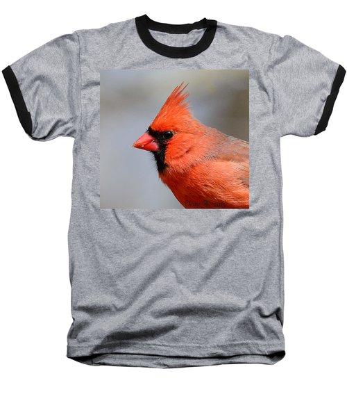 Male Cardinal Baseball T-Shirt