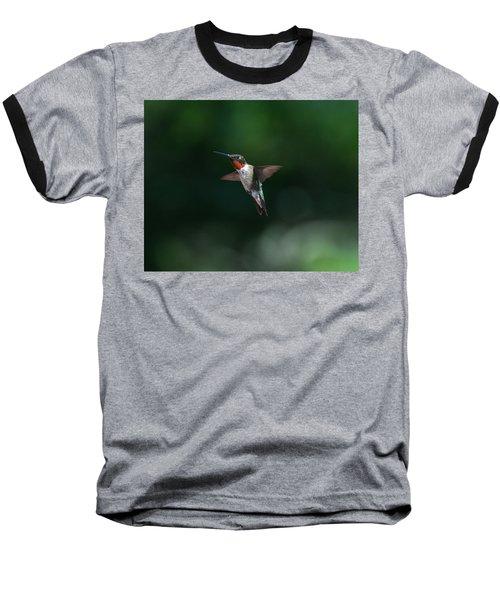 Male Ruby Throated Hummingbird Baseball T-Shirt by Brenda Jacobs