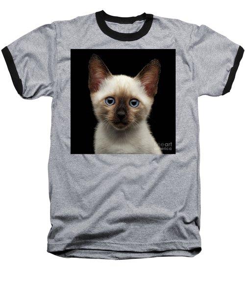 Mekong Bobtail Kitty With Blue Eyes On Isolated Black Background Baseball T-Shirt by Sergey Taran