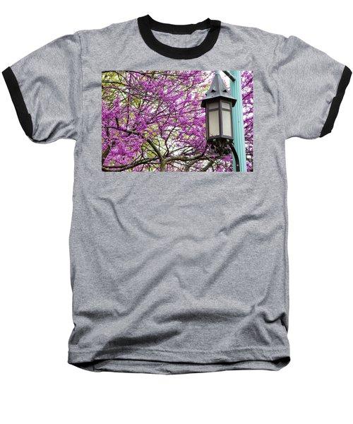 Michigan State University Spring 7 Baseball T-Shirt