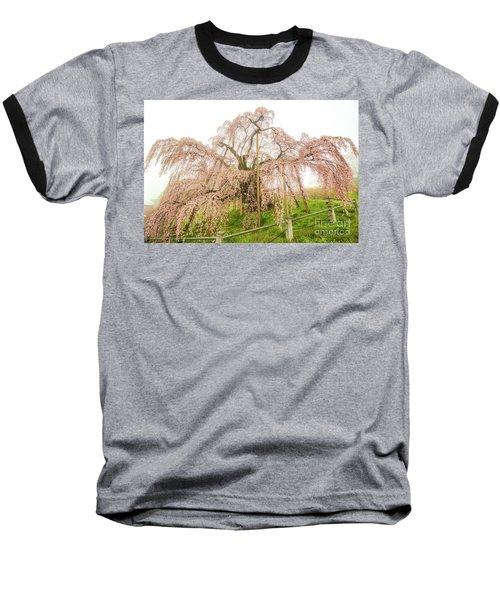 Miharu Takizakura Weeping Cherry02 Baseball T-Shirt