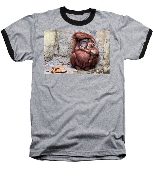 Mom And Baby Orangutan Baseball T-Shirt by Stephanie Hayes
