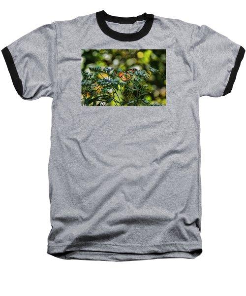 Monarch Baseball T-Shirt by Rick Friedle