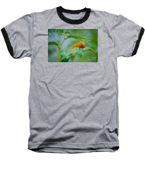 Morning Dew Baseball T-Shirt by Patrick Shupert