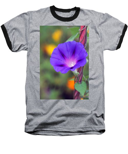 Baseball T-Shirt featuring the photograph Morning Glory by Vadim Levin