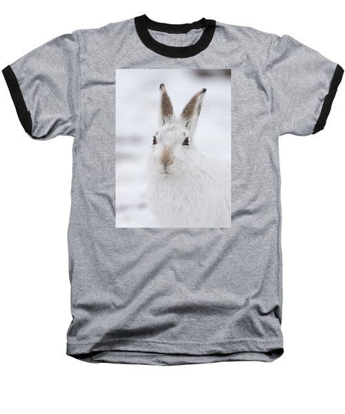 Mountain Hare In The Snow - Lepus Timidus  #1 Baseball T-Shirt
