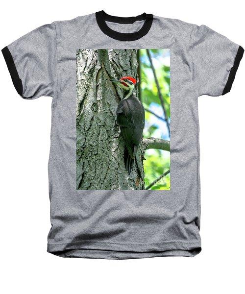 Mr. Pileated Woodpecker Baseball T-Shirt