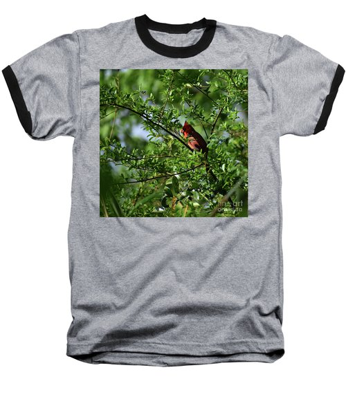 Baseball T-Shirt featuring the photograph Mr Red by Skip Willits