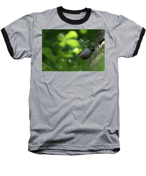 Nuthatch Baseball T-Shirt