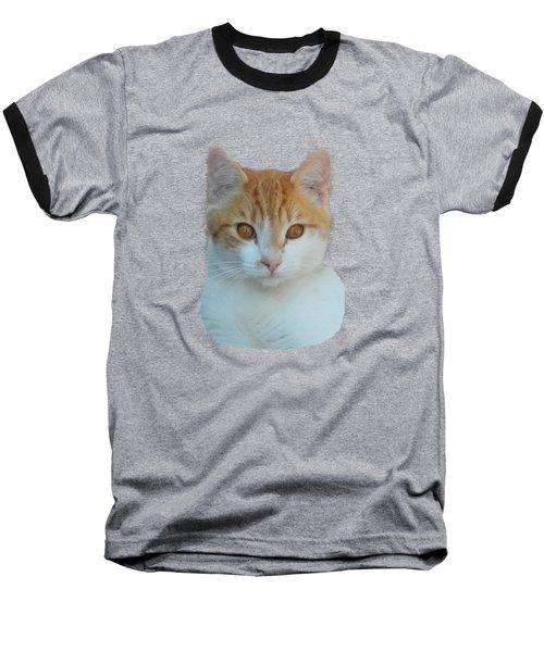 Orange And White Cat Baseball T-Shirt
