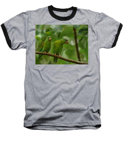 Orange -chinned Parakeets  Baseball T-Shirt