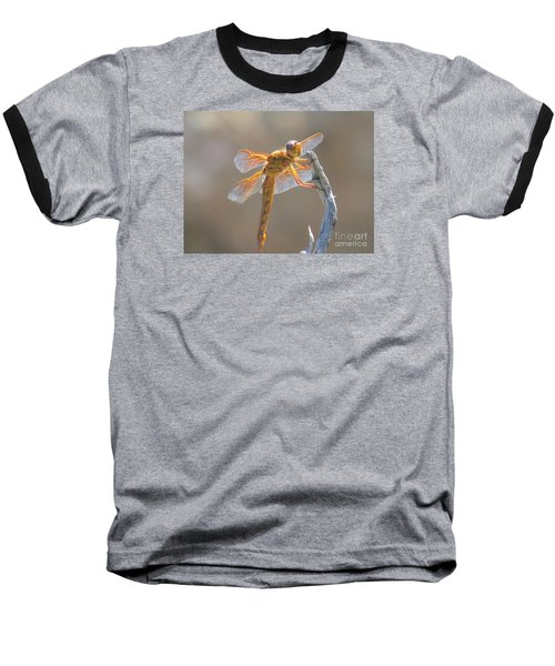 Dragonfly 5 Baseball T-Shirt