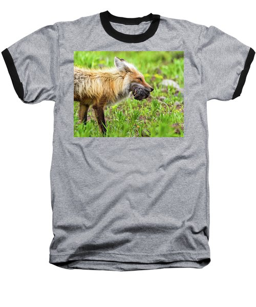 Out Foxed  Baseball T-Shirt by Scott Warner