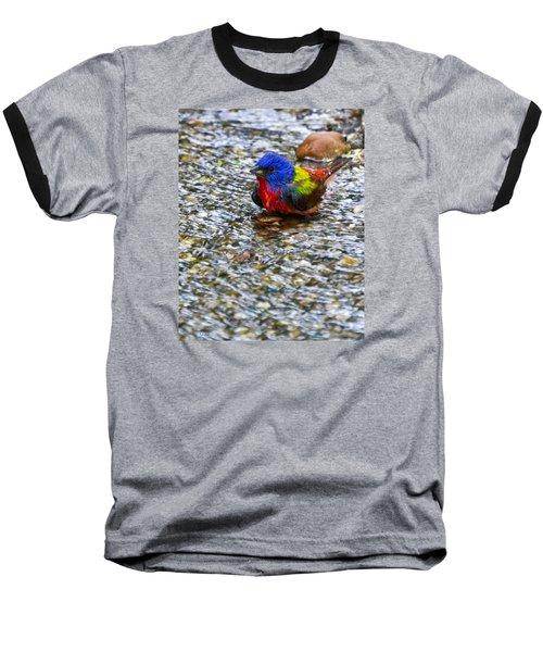 Da223 Painted Bunting Bathtime Daniel Adams Baseball T-Shirt