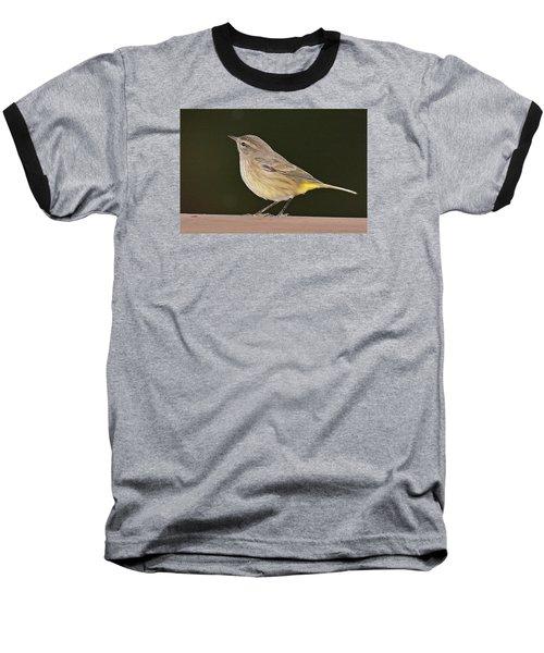 Palm Warbler Baseball T-Shirt by Alan Lenk